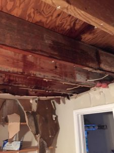 Extreme Water Damage Restoration